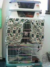 20060823_2001_cage2b1